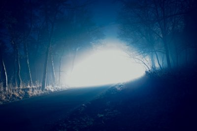 Forest-Light-UFO.jpg